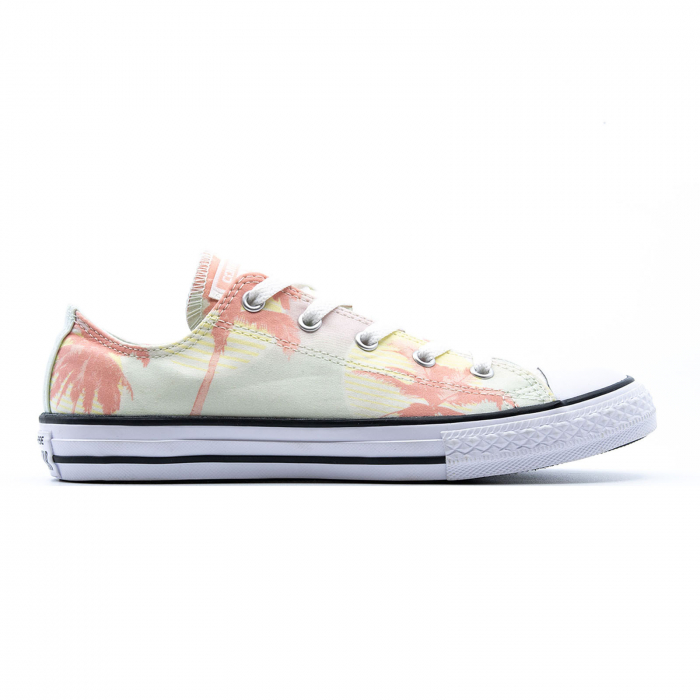 Chuck Taylor All Star Palm Trees 0