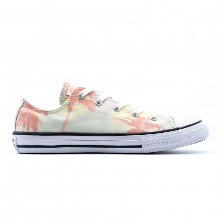 Chuck Taylor All Star Palm Trees0