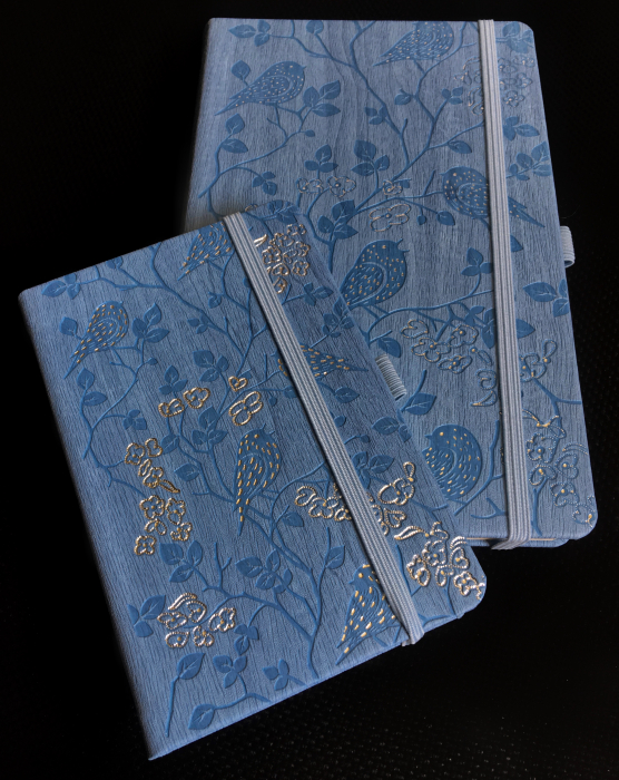 Bloc Notes Ivory Nature Bleu 13x21 cm  Herlitz 2