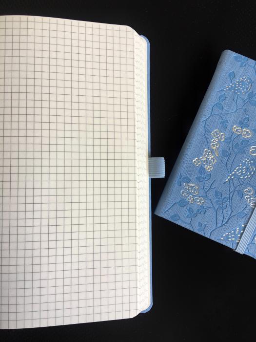 Bloc Notes Ivory Nature Bleu 13x21 cm  Herlitz 1