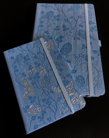 Bloc Notes Ivory Nature Bleu 13x21 cm  Herlitz2