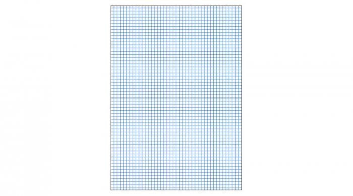 Blocnotes MARUMAN High Quality Report Pad P164, A5, 40 file, patratele [1]