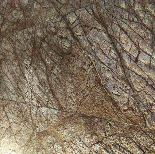 Rainforest Brown 20x61 cm autoadeziva 1