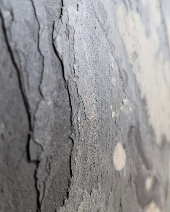 Autumn Rustic 61 x 122 cm (0,7442 mp) [2]