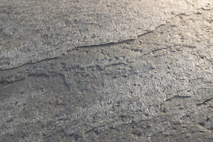 Mostra Translucid-Silver Shine A6 0