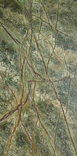 Mostra Rainforest Green A6 [1]