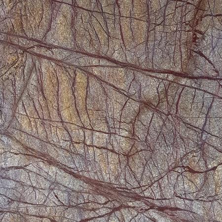 Rainforest Brown 61x61 cm (2.2 mp)0