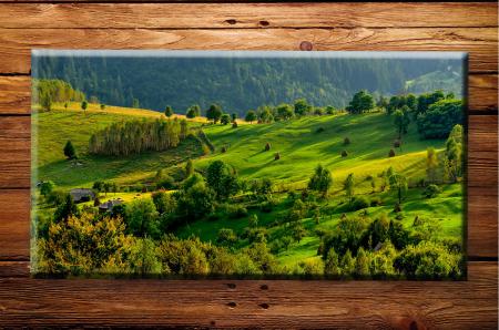 Tablou Canvas Print Verde de Toamna [0]