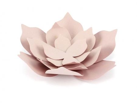 Nuferi hartie roz pudra (3 nuferi/set)0