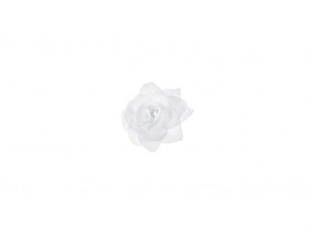 Trandafiri adezivi de culoare alba, 9 cm (1 pach/24 buc)4