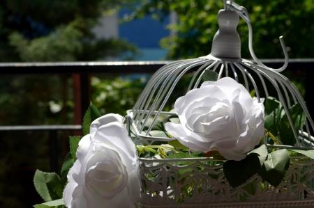 Ghirlanda trandafiri albi (1.75m)3