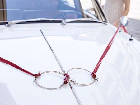 Set inele decorative din ratan culoare rosu inchis (decor frontal si 4 manere usa)4