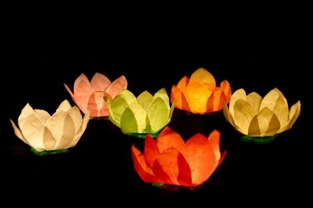 Set Lanterne plutitoare lotus, mix de culori, 29cm (1 pach/6 buc)5
