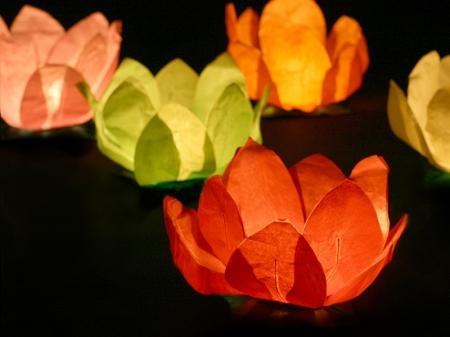 Set Lanterne plutitoare lotus, mix de culori, 29cm (1 pach/6 buc)3