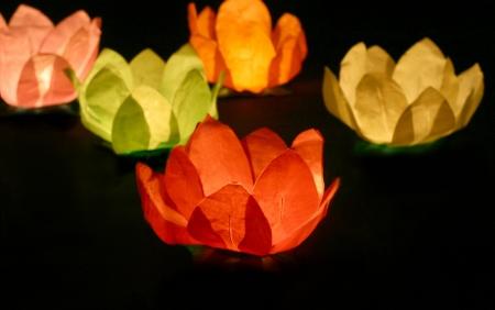 Set Lanterne plutitoare lotus, mix de culori, 29cm (1 pach/6 buc)4