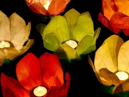 Set Lanterne plutitoare lotus, mix de culori, 29cm (1 pach/6 buc)2