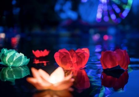 Set Lanterne plutitoare lotus, mix de culori, 29cm (1 pach/6 buc)1
