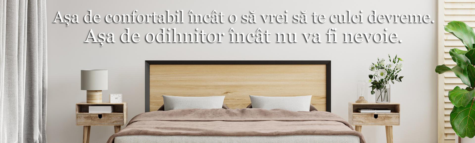 Banner pagina paturi