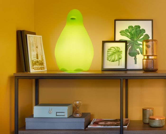 Obiecte decorative luminoase KOKO SD KOK050 2