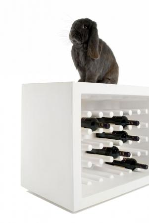 Suport sticle de vin BACHUS2