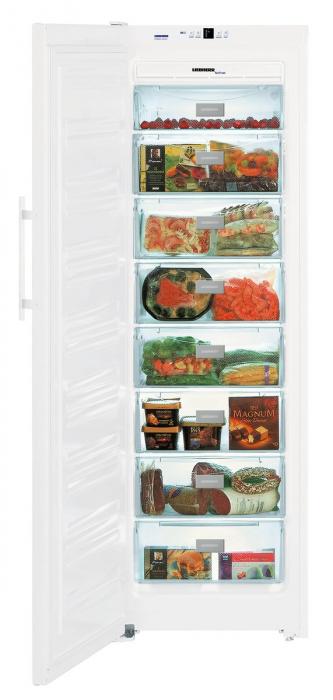 SGN 3063 Comfort NoFrost Congelator cu NoFrost [1]