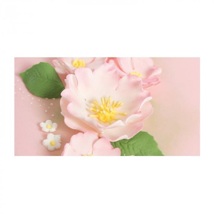 decupatoare-pasta-de-zahar-flori-maces-decorare-cofetarie-set-5buc 2