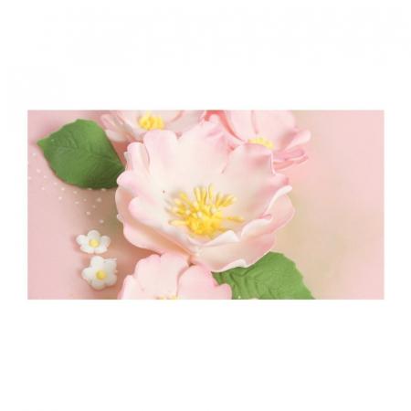 Decupatoare pentru fondant, Trandafir salbatic, set 5 buc2