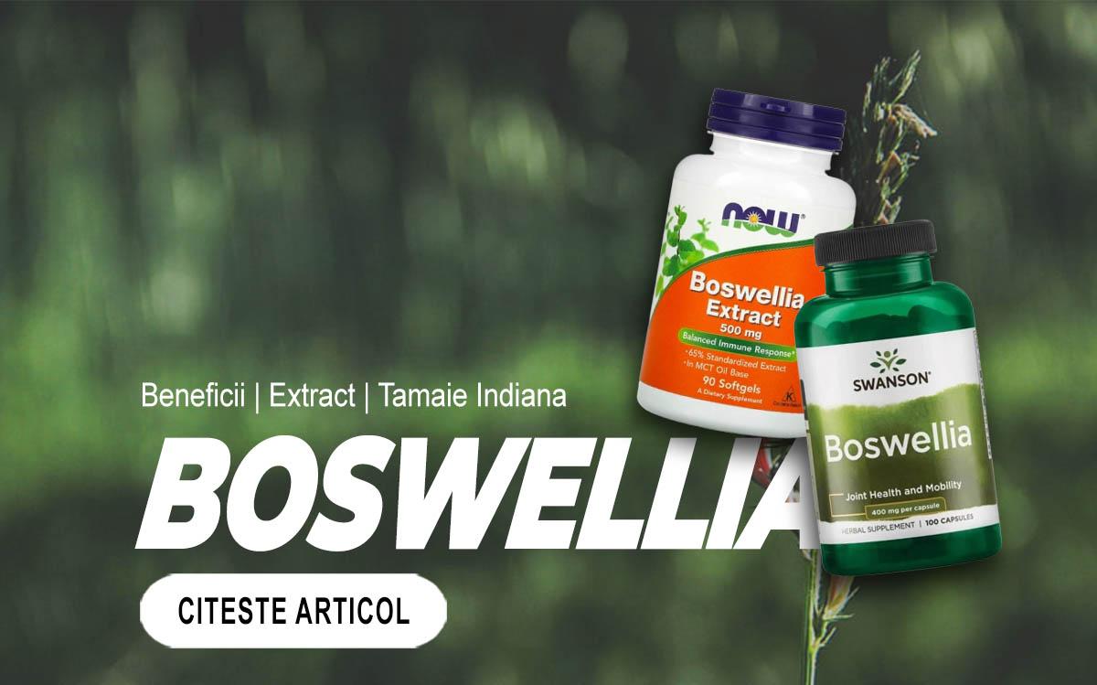 BOSWELLIA - Beneficiile extractului de tamaie indiana