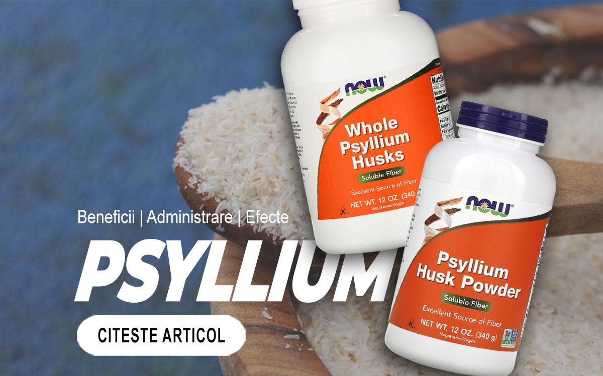 PSYLLIUM – Tot ce trebuie sa stii despre aceste fibre benefice