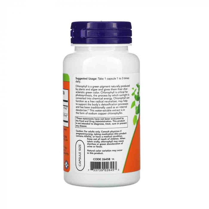 chlorophyll-clorofila-100mg-now-foods [2]