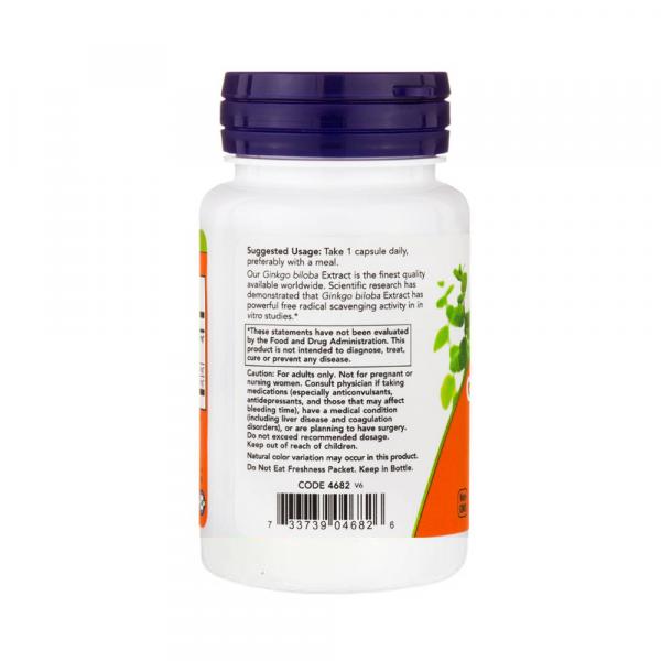 Now Foods, Ginkgo Biloba, Double Strength, 120 mg, 200 Veg Capsules [2]