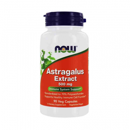 astragalus-extract-500mg-now-foods [0]