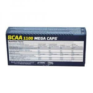 bcaa-1100-olimp [2]