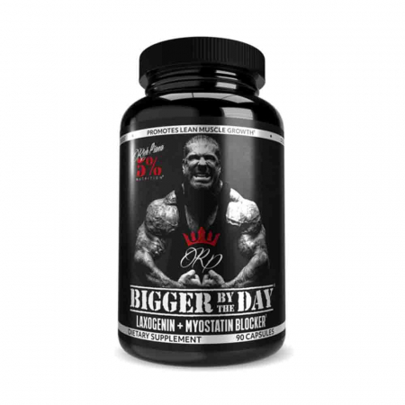 bigger-by-the-day-rich-piana-5-nutrition [0]