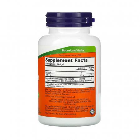 boswellia-extract-now-foods [2]
