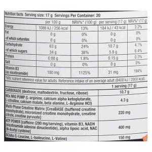 Nitrox Therapy Pre-workout, BioTech USA, 340g [4]