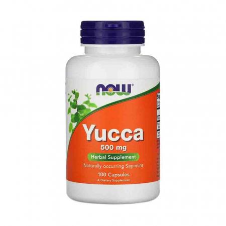 yucca-500mg-now-foods [0]