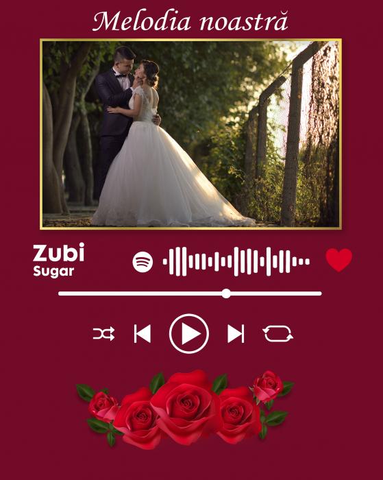 Placheta Spotify - Piesa Noastra [1]