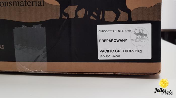 Licheni decorativi naturali stabilizati, Culoare Verde Pacific, Pacific Green 87, Jolie Arts [3]