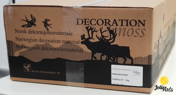 Licheni decorativi naturali stabilizati, Culoare Mov, Purple 67, Jolie Arts [3]