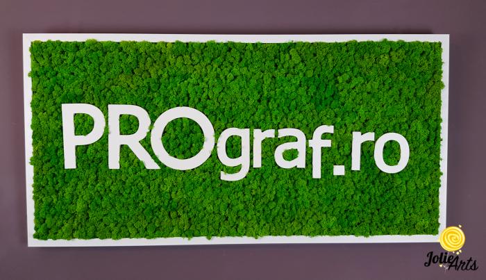 Logo personalizat cu litere volumetrice, decorat cu licheni naturali stabilizati. [1]