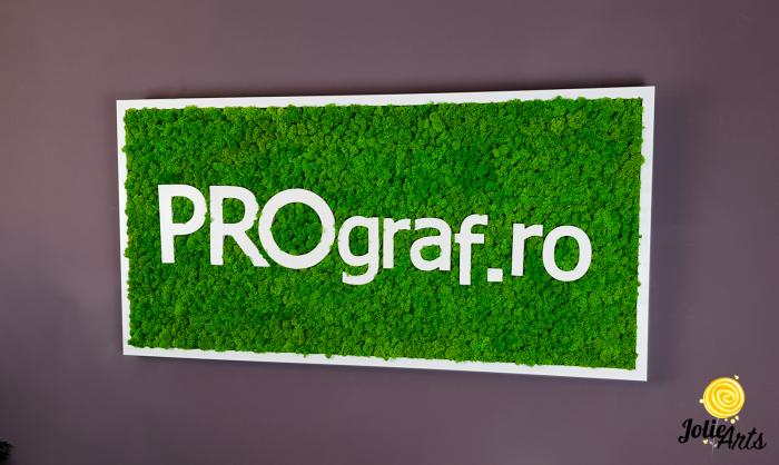 Logo personalizat cu litere volumetrice, decorat cu licheni naturali stabilizati. [2]