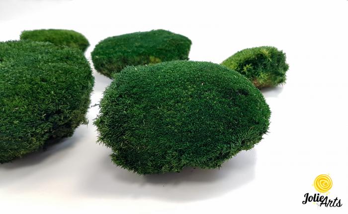 Muschi bombat natural stabilizat, verde inchis [0]