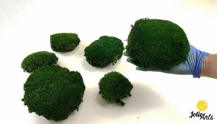 Muschi bombat natural stabilizat, verde inchis [4]