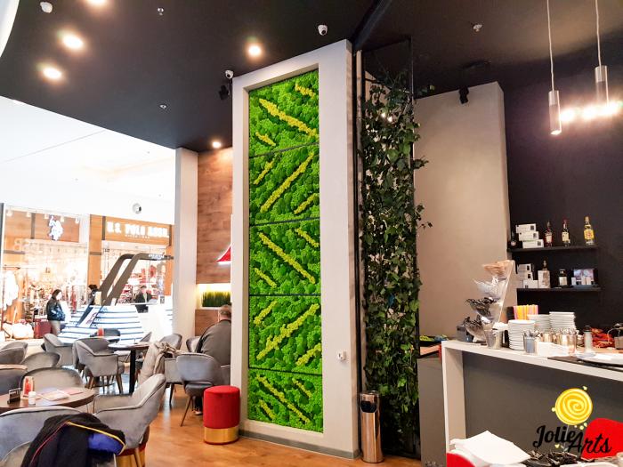 Panouri decorative cafenea, licheni, muschi bombati, plante naturale stabilizate [0]