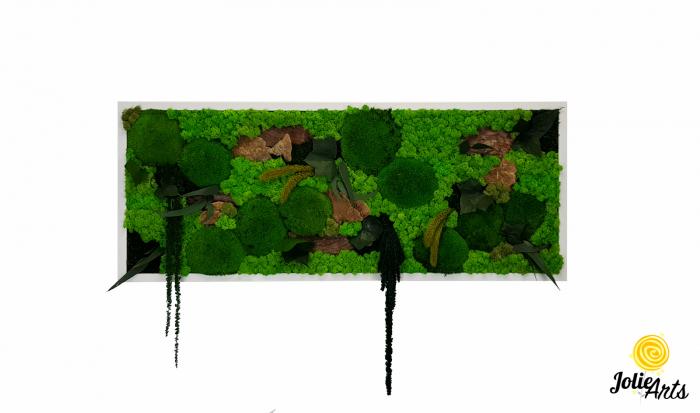 Tablou licheni, muschi bombati de padure si plante naturale stabilizate Jolie Arts, model Amaranthus [0]