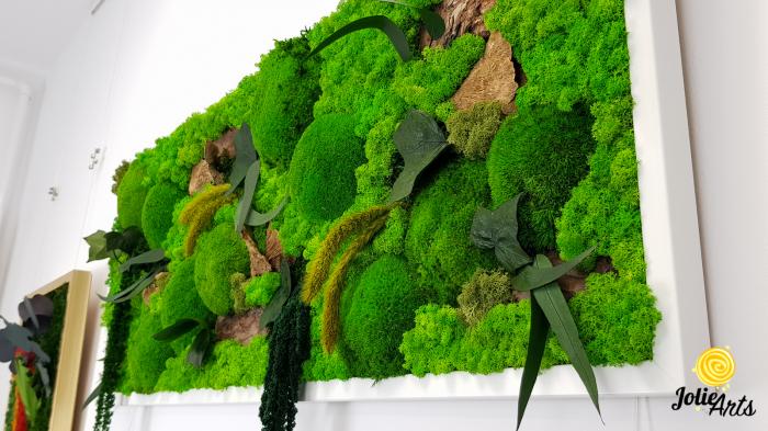 Tablou licheni, muschi bombati de padure si plante naturale stabilizate Jolie Arts, model Amaranthus [4]