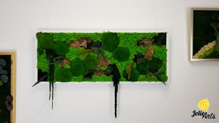 Tablou licheni, muschi bombati de padure si plante naturale stabilizate Jolie Arts, model Amaranthus [5]