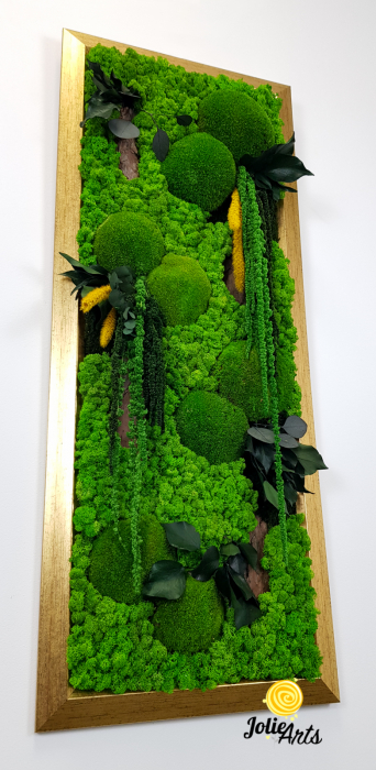 Amaranthus Verde Personalizat [4]