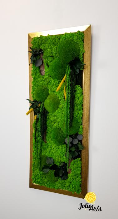 Amaranthus Verde Personalizat [1]